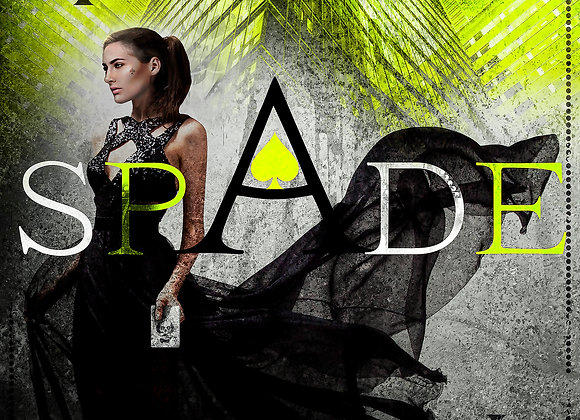 Spade Signed Paperback