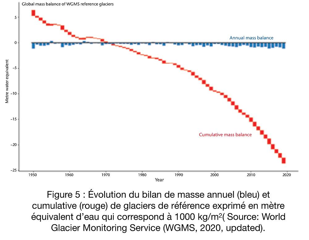 Évolution du bilan de masse annuel et cumulatif de glaciers de montagne de référence.