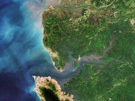 Les mangroves, une Solution fondée sur la Nature pour lutter contre le réchauffement climatique