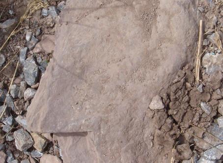 Der weise Stein.