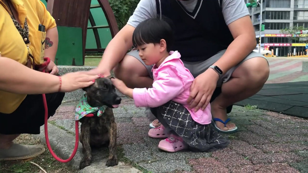 Max with little kids 2019_11_04.mp4