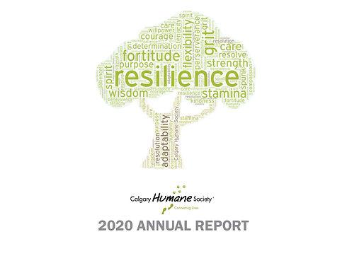 Annual Report 19.jpg
