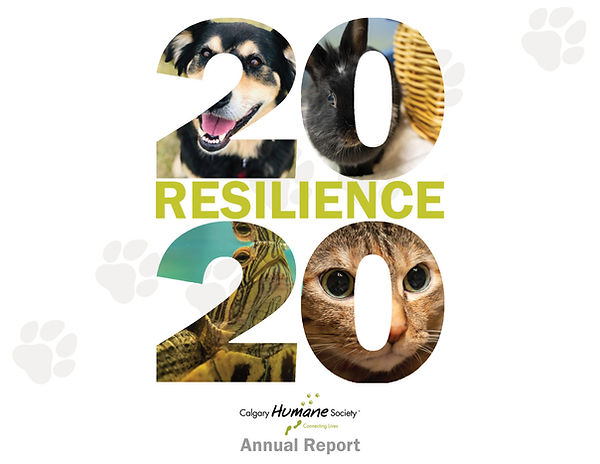 Annual Report .jpg