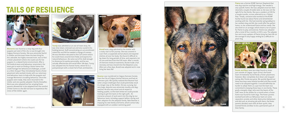 Annual Report 7.jpg