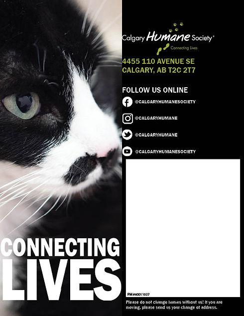 FINAL Connecting Lives_SpringSummer 202111.jpg