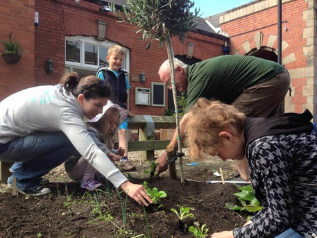 Incredible Edibles planting