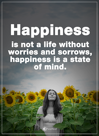 Happiness is a state of mind.png