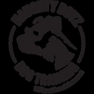 Naughty Boyz Dog Training_logo_web.png