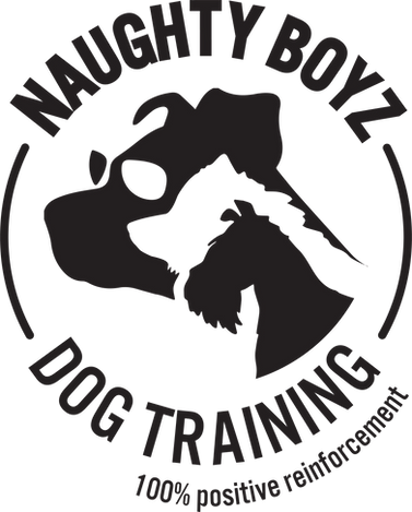 Naughty Boyz Dog Training_logo_print.png
