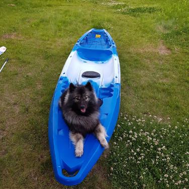Shilo goes kayaking!