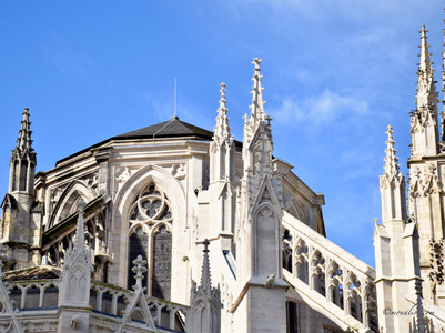Cathe`drale Saint Andre`