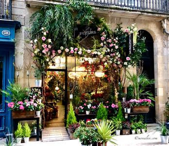 Bordeaux Flower Shop