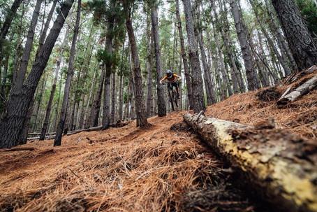 Mountain Biking at Linga Longa