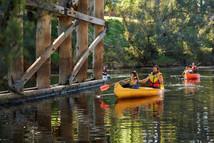Explore the Blackwood River