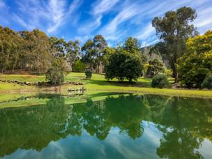 Lewana Cottages Dam