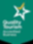 QTAB-Shield-GreenYellow-Rev-RGB.png