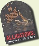 Alligators in Paradise