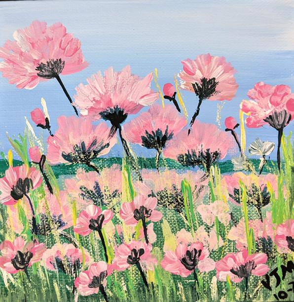 field of pink flowers.jpg