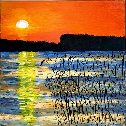 sunset on the marshland