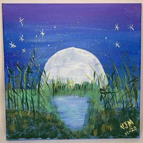 Marshlands at moonrise