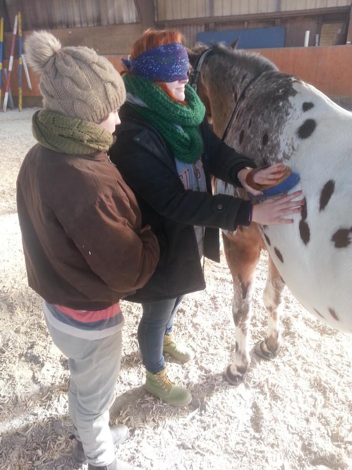 ATA - Akademie für tiergestuetzte Ausbildung
