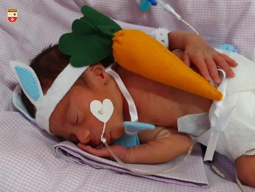 Hospital Edson Ramalho surpreende familiares com bebês em fantasias de coelhinho da Páscoa
