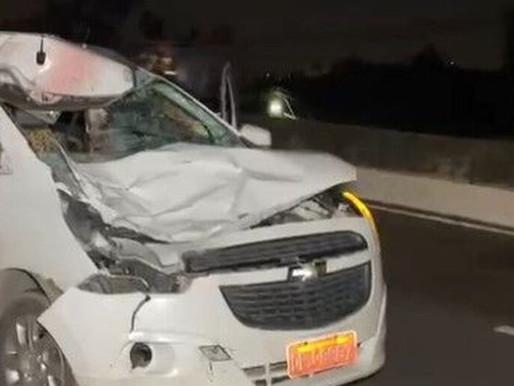 Cavalo morre após ser atropelado por carro na BR 230