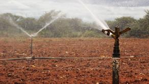 Governo federal retoma obras de assentamento irrigado iniciadas em 2013 no Piauí