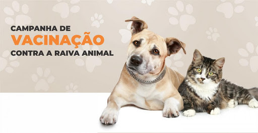Campanha de vacinação contra raiva animal começa em toda a Paraíba