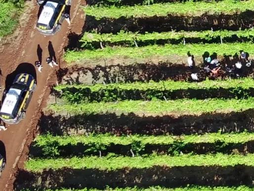Operação flagra trabalhadores em situação análoga à escravidão na Paraíba