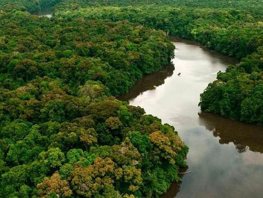 Governo inaugura antena para ampliar fiscalização no combate ao desmatamento na Amazônia