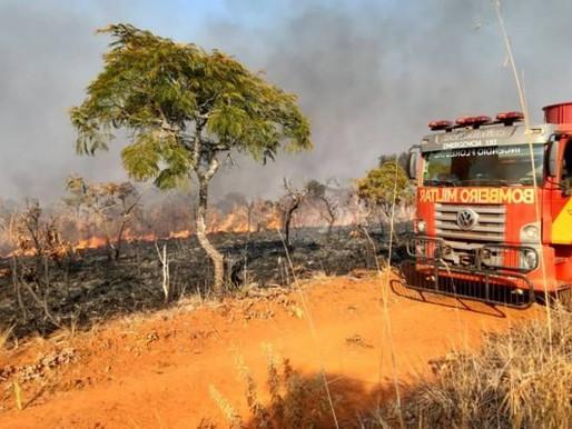 Incêndio no Parque das Emas já atingiu cerca de 20 mil hectares