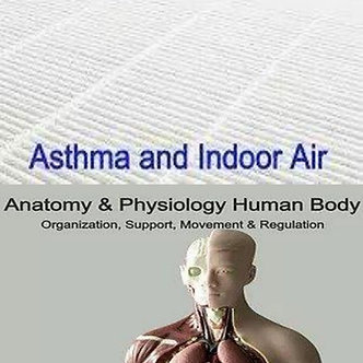 20 AARC CRCE: Asthma Indoor Air & Anatomy Physiology Org Support