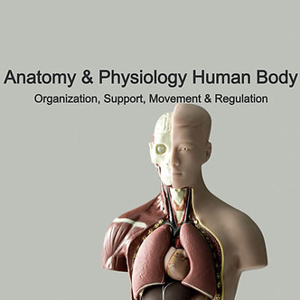 12 AARC CRCE: Anatomy & Physiology Human Body Org & Support