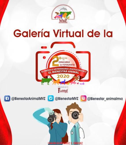 GALERÍA_VIRTUAL_BANNER.jpg