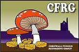 CFRG logo web100.jpg