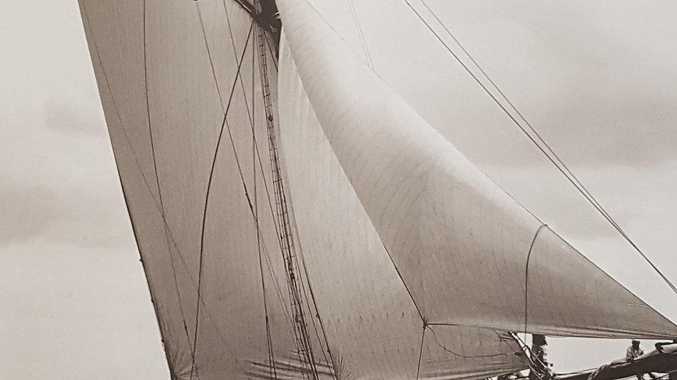 Large Sepia tone Photo