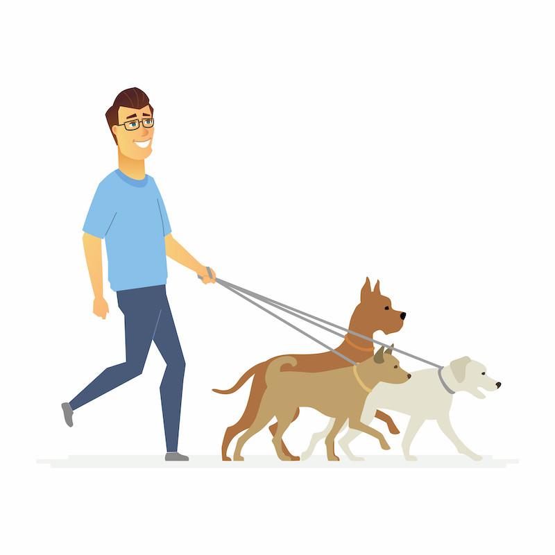 Benefícios à saúde do coração em passear com cachorro