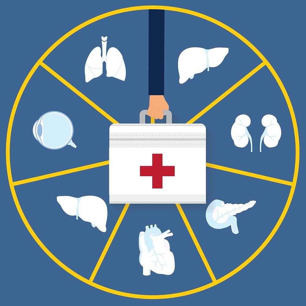 órgãos para doação