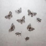35. Butterfly, Bee or Beetle