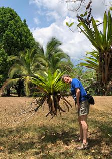 deb plant.jpg