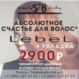 SBС_Lebel+UKLADKA_02.2020-02.png