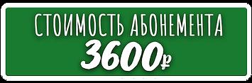 aboneet_voploshenie.png