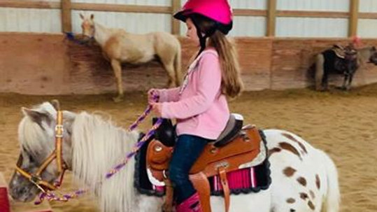 Horse Back Riding Lessons - Gift Certificate