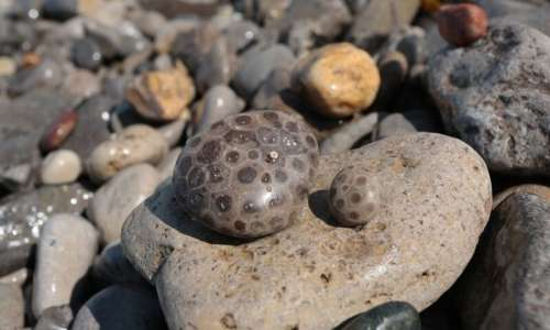 pet.17.petoskey stones_0