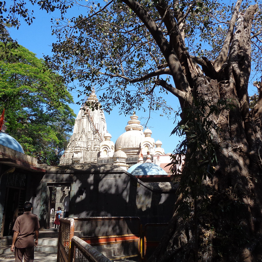 Shakti Pilgrimage ~ India ~ January 2021