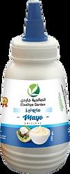 mayon.png