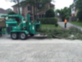 Tree mulching tree brush grinding servic