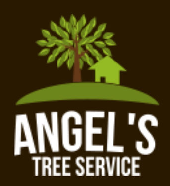 Angels tree service spring tx.jpeg