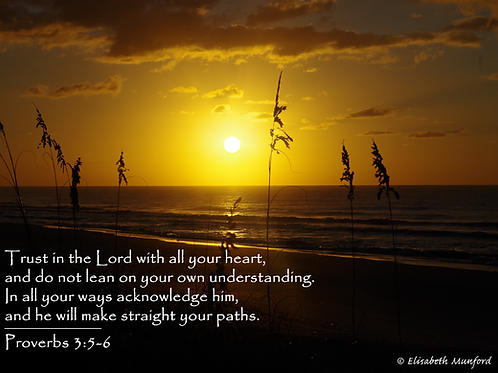 Notecards: Sunrise at Topsail with Proverbs 3:5-6
